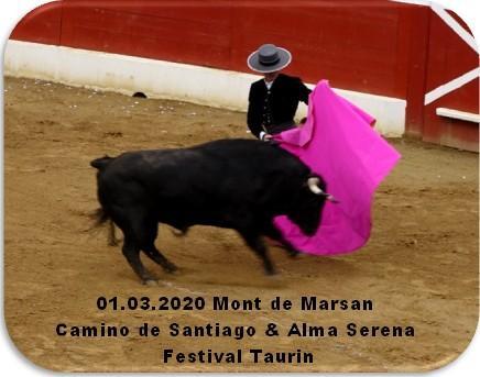 01 03 2020 mont de marsan camino de santiago alma serena festival taurin