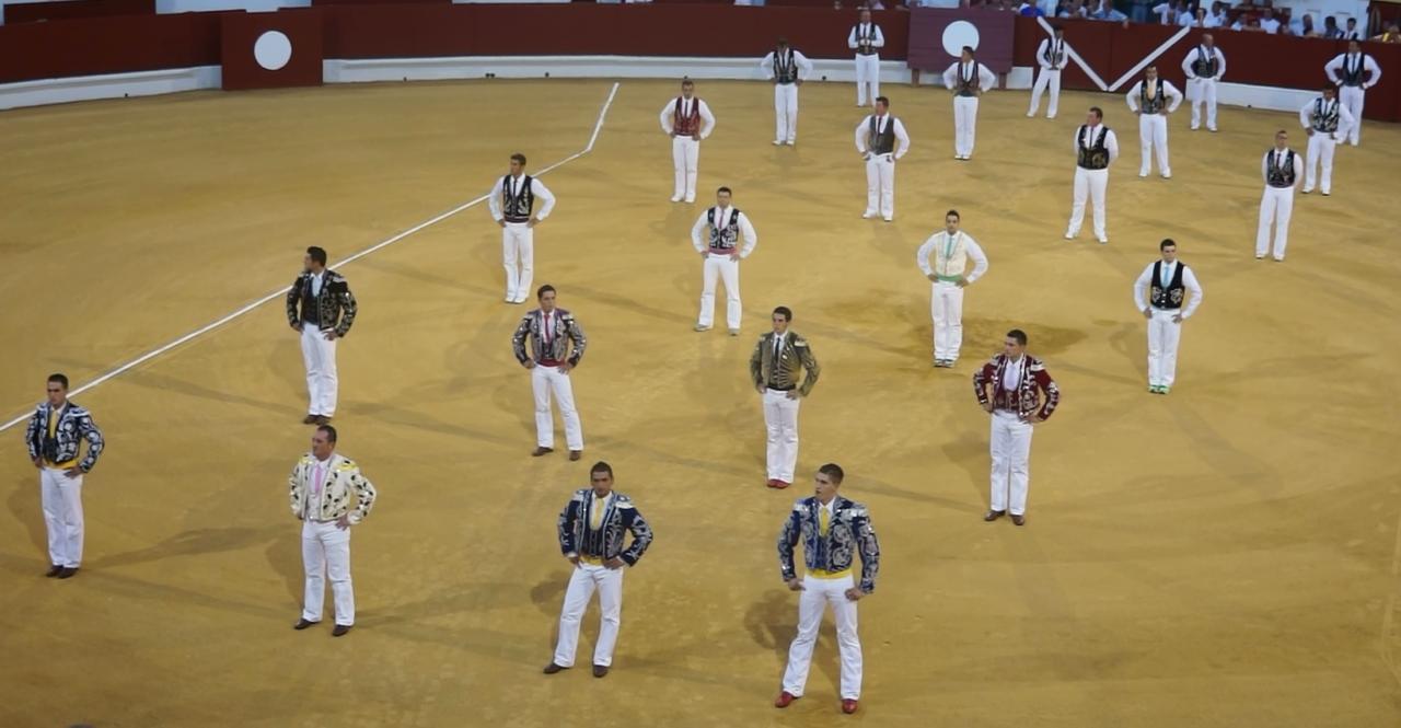 02-08-13-hagetmau-concours-4-troupeaux.jpg