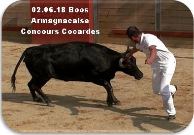 02 06 18 boos armagnacaise concours de cocardes