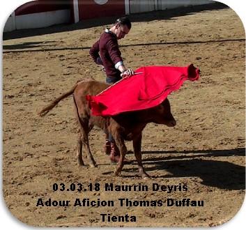 03 03 18 maurrin deyris adour aficion thomas duffau tienta