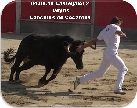 04 08 18 casteljaloux deyris concours de cocardes