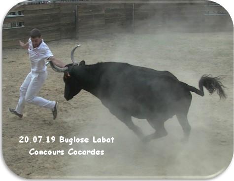 20 07 19 buglose labat concours cocardes 1