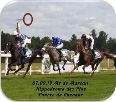 07 09 19 mt de marsan hippodrome des pins course de plats de chevaux
