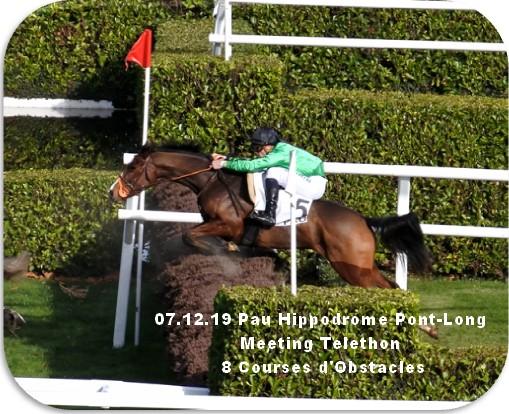 07 12 19 pau hippodrome pont long meeting 8 courses d obstacles