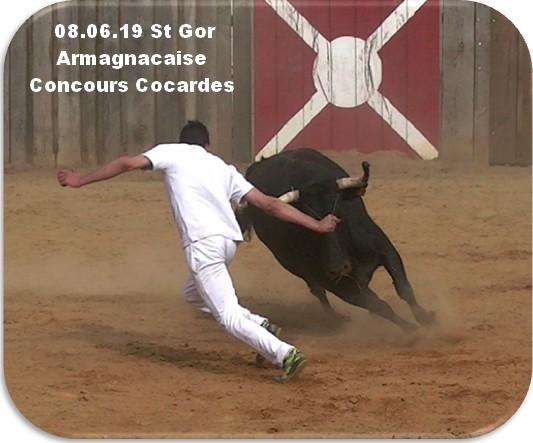 08 06 19 st gor armagnacaise concours cocardes