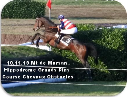 10 11 19 mt de marsan hippodrome grands pins course chevaux obstacles