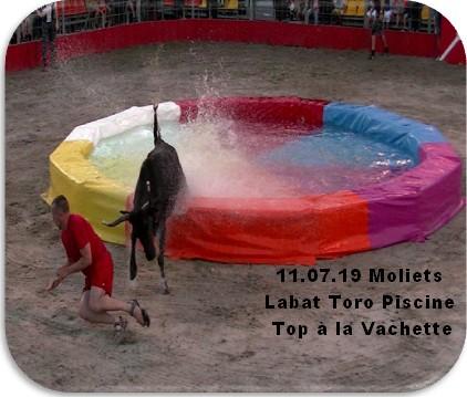 11 07 19 moliets toro piscine labat