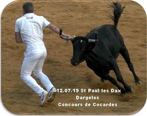 12 07 19 st paul les dax dargelos concours cocardes