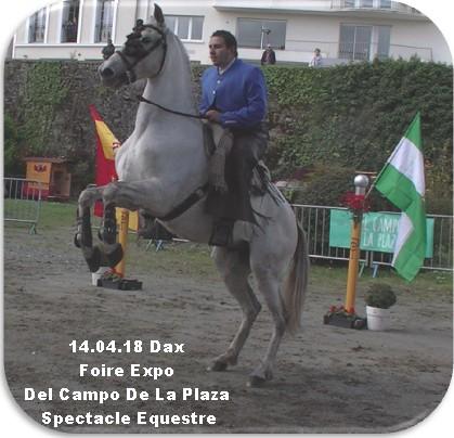 14 04 18 dax foire expo de campo de la plaza spectacle equestre accueil