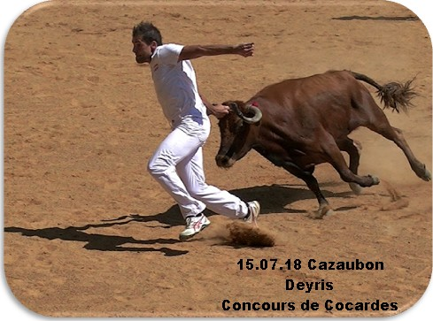 15 07 18 cazaubon deyris concours de cocardes
