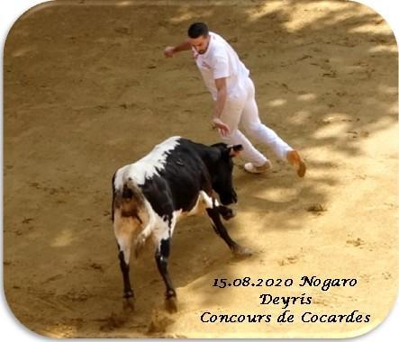 15 08 2020 nogaro deyris concours cocardes