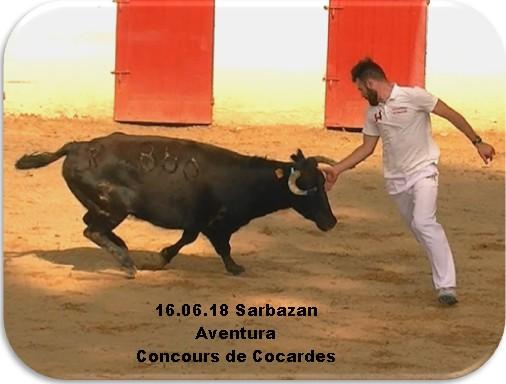 16 06 18 sarbazan aventura concours de cocardes