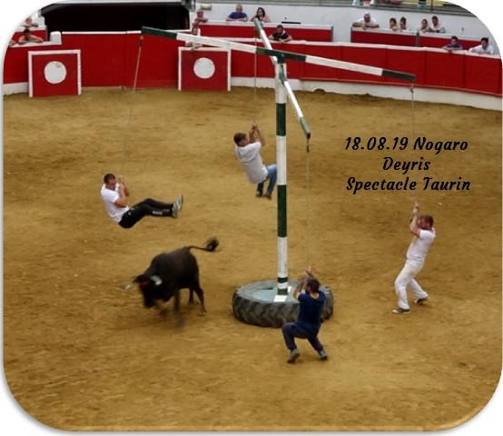18 08 19 nogaro deyris spectacle taurin