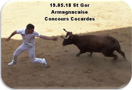 19 05 18 st gor armagnacaise concours cocardes