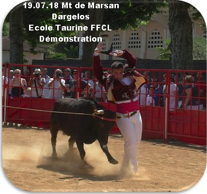 19 07 18 mt de marsan dargelos ecole taurine ffcl course demonstration