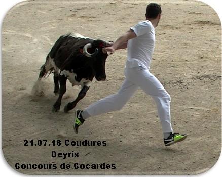 21 07 18 coudures deyris concours de cocardes