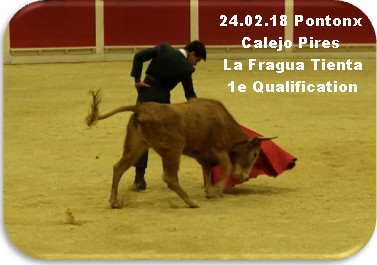 24 02 18 pontonx calejo pires la fragua tienta 1e qualification