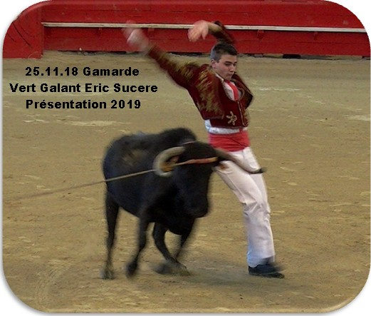 25 11 18 gamarde vert galant eric sucere presentation 2019