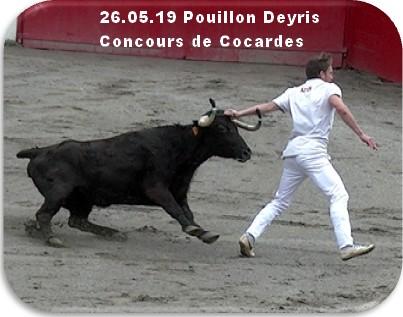 26 05 19 pouillon deyris concours de cocardes