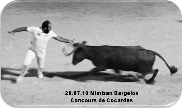 26 07 18 mimizan dargelos concours de cocardes