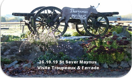 26 10 19 st sever maynus ferrade troupeaux