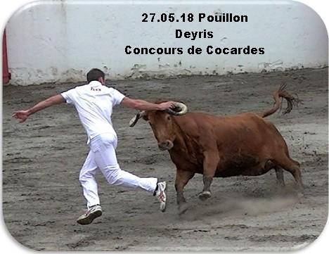 27 05 18 pouillon deyris concours de cocardes 1
