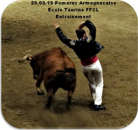 29 03 19 pomarez armagnacaise ecole taurine ffcl entrainement
