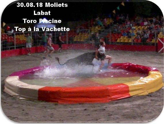 30 08 18 moliets labat toro piscine top a la vachette