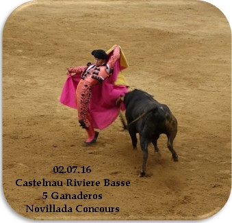 Castelnau novillada