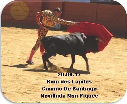 20.08.17 Rion Camino De Santiago Novillada Non Piquée