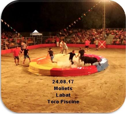 24.08.17 Moliets Toro Piscine