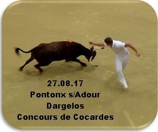 27.08.17 Pontonx Dargelos Cocardes