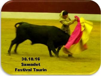 Festival taurin