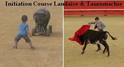Initiation à la  Tauromachie & Course Landaise