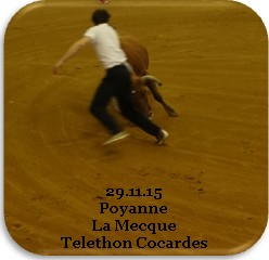poyanne-1.jpg