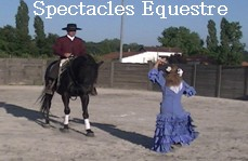 Spectacle Equestre & Andalou