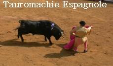 Tauromachie Espagnole