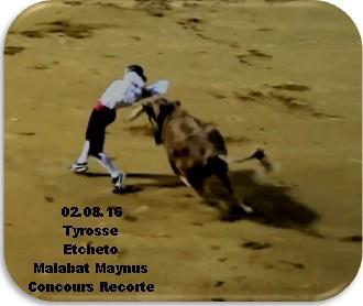 Tyrosse 1